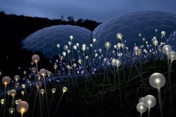 位于英国Cornwall郡St.Austell的伊甸园项目的《Field of Light》(©Bruce Munro)