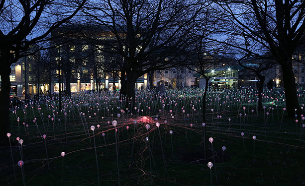 位于英国爱丁堡的St Andrew广场展出的《Field of Light》(©Bruce Munro)